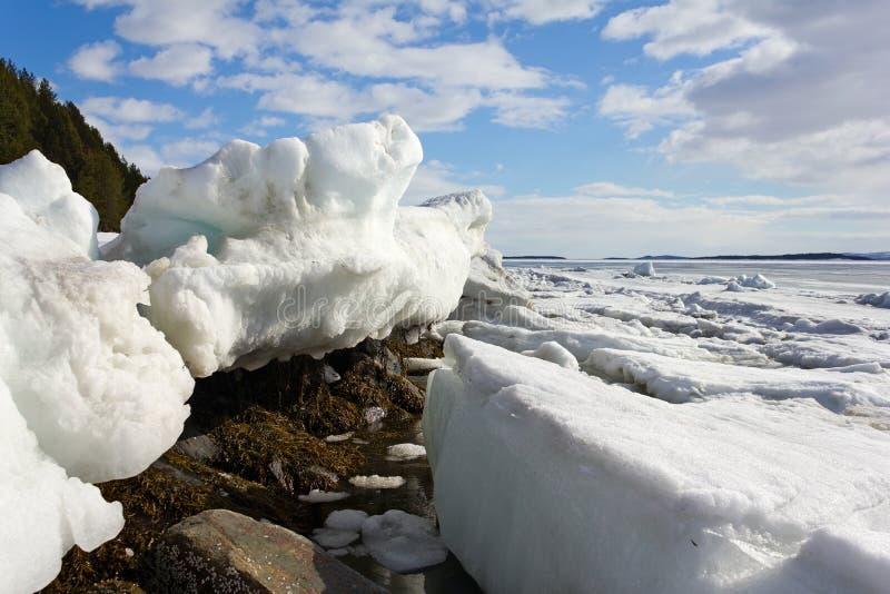 冰熔化的海运 免版税库存照片