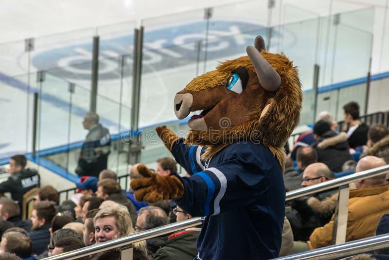 冰球爱好者佩带的动物成套装备 免版税库存照片