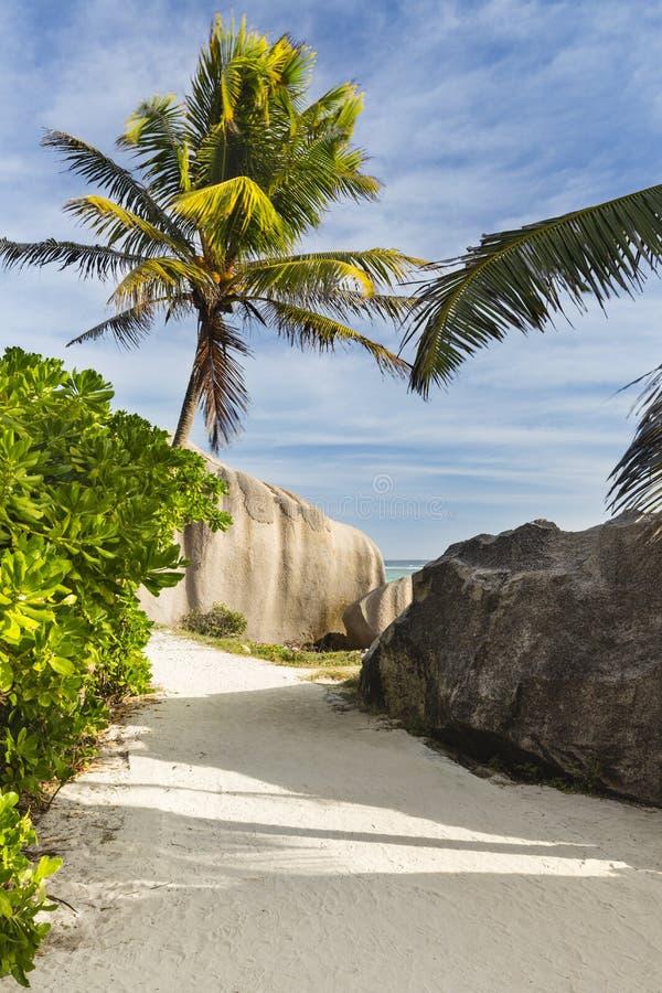冰砾和棕榈树,拉迪格岛,塞舌尔群岛 免版税库存图片
