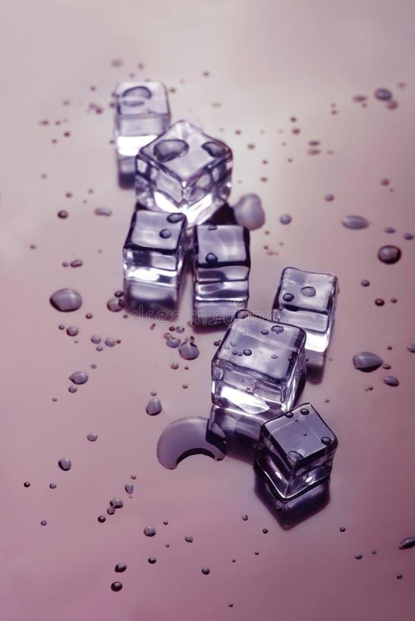 冰立方体熔化 免版税库存照片