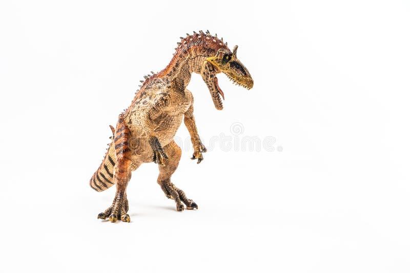 冰脊龙,在白色背景的恐龙 免版税图库摄影