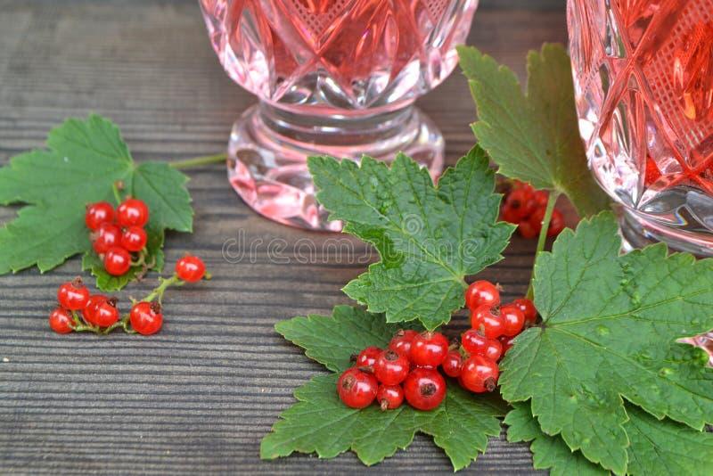 冰茶用在黑木背景的无核小葡萄干 新鲜的红浆果可口蜜饯  冷的夏天饮料 r 免版税图库摄影