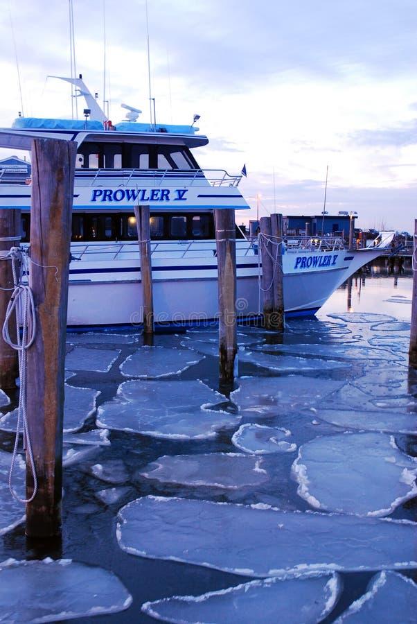 冰被装箱的港口 免版税库存图片