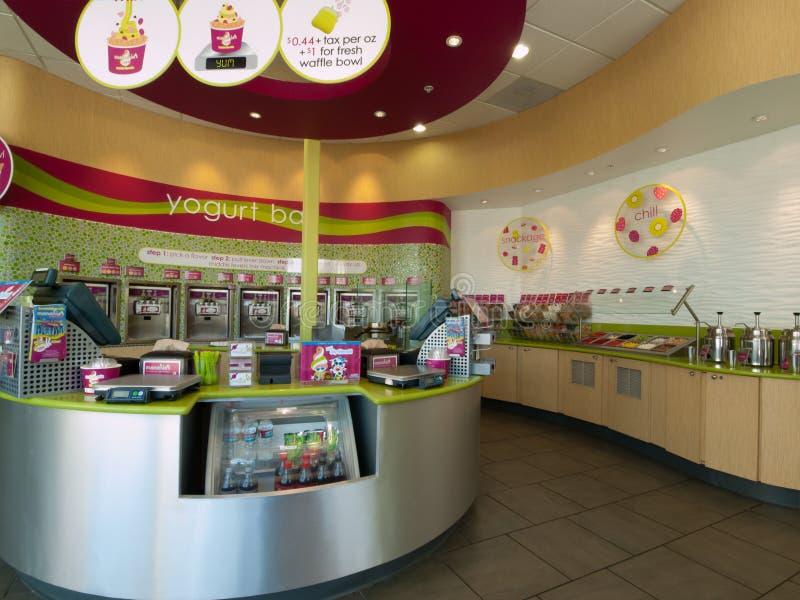 冰冻酸奶酪商店 库存照片