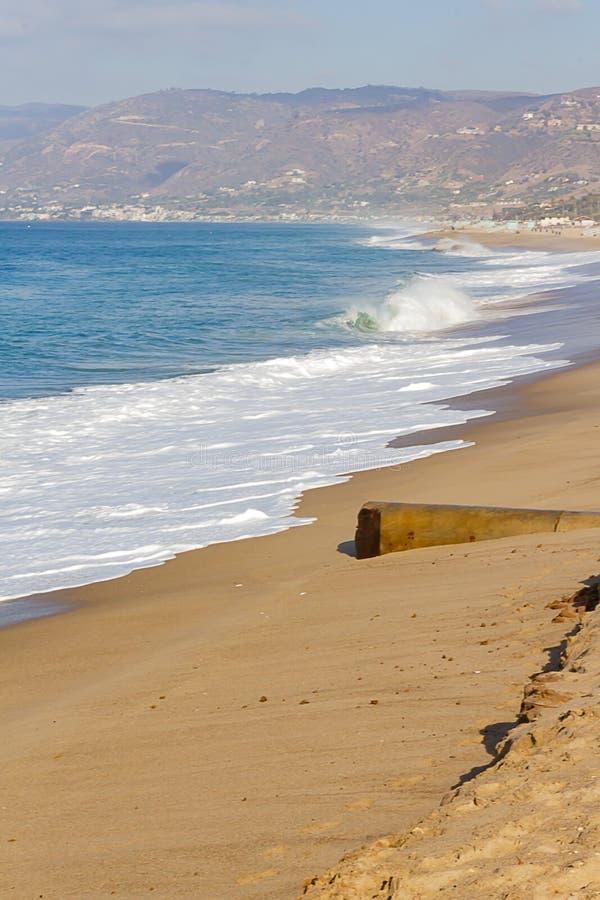 冲含沙海岸线的起泡沫的回流对漂流木头和snady上升,与海岸线 免版税库存图片