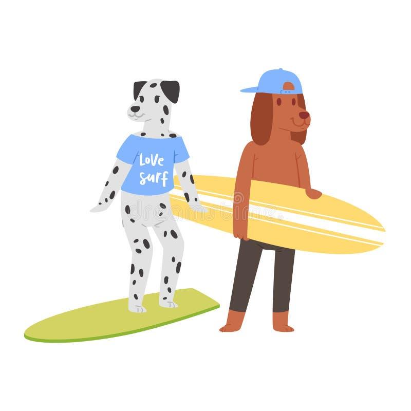冲浪在冲浪板例证色情套的海浪传染媒介猫狗动物冲浪者字符动画片年轻运动员 皇族释放例证