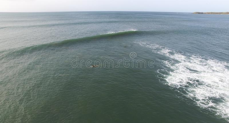 冲浪在水中的冲浪者 库存照片