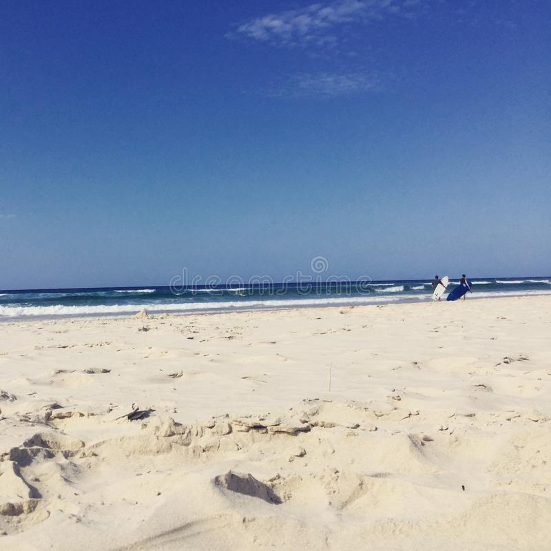 冲浪在英属黄金海岸澳大利亚的碰撞的波浪 库存图片