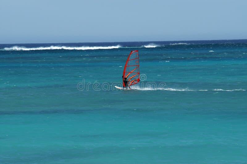 冲浪在Ningaloo礁石Exmouth西澳州的风 免版税库存图片