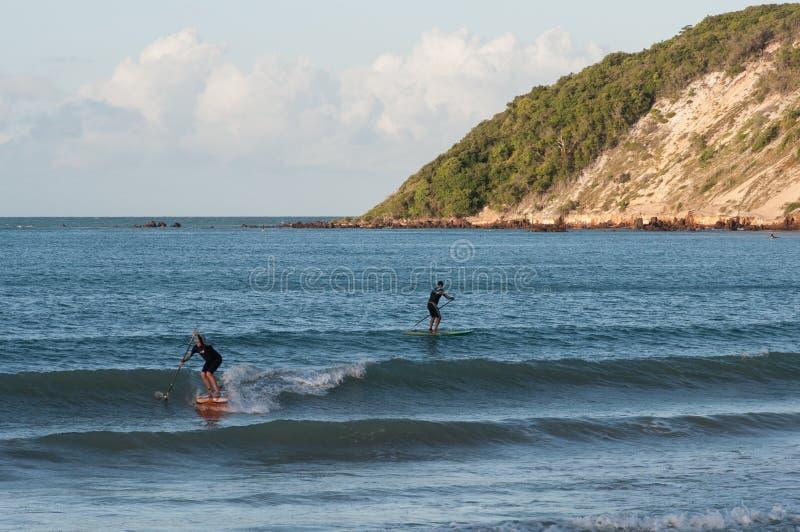 冲浪在Ponta内格拉海滩的桨 库存图片