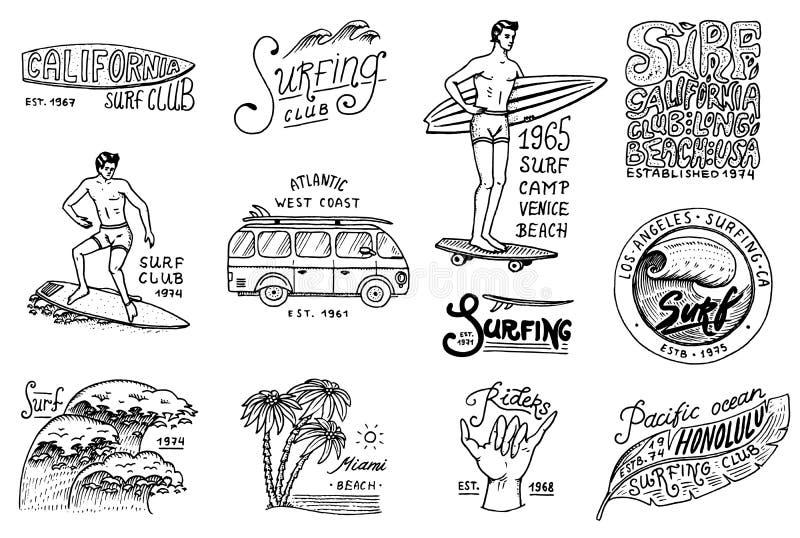 冲浪徽章和波浪、棕榈树和海洋 热带和加利福尼亚 冲浪板的在海滩的人,夏天和海 皇族释放例证