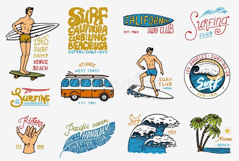 冲浪徽章和波浪、棕榈树和海洋 热带和加利福尼亚 冲浪板的在海滩的人,夏天和海 库存例证