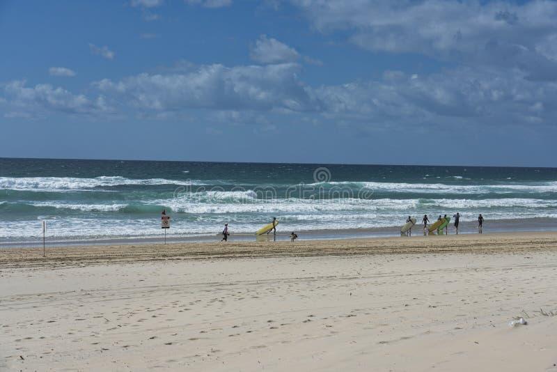冲浪的天堂在太平洋 库存图片
