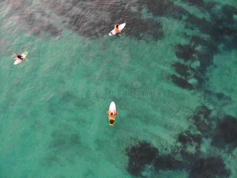 冲浪者鸟瞰图他们的等待波浪的委员会的在日落期间 库存图片