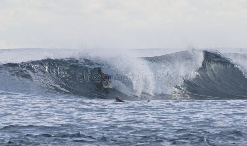 冲浪 免版税库存照片