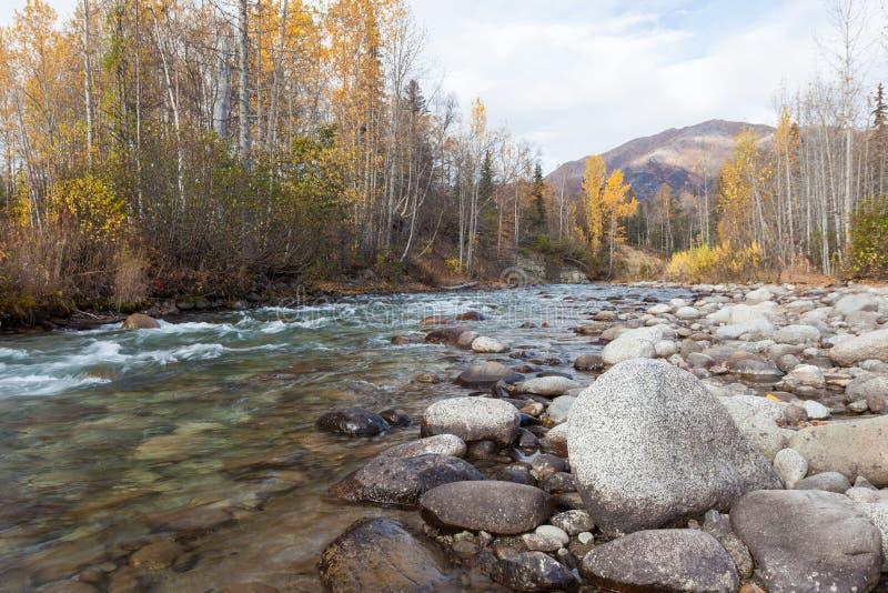 冲的阿拉斯加的河在秋天 图库摄影