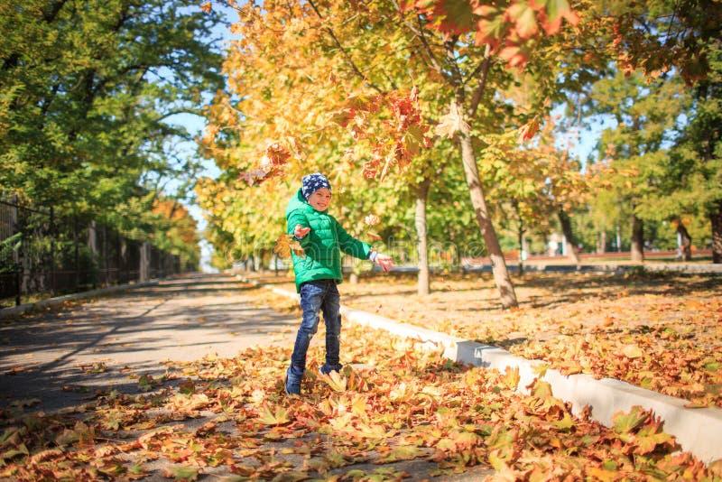冲秋叶一个快乐的男孩的画象 免版税库存照片