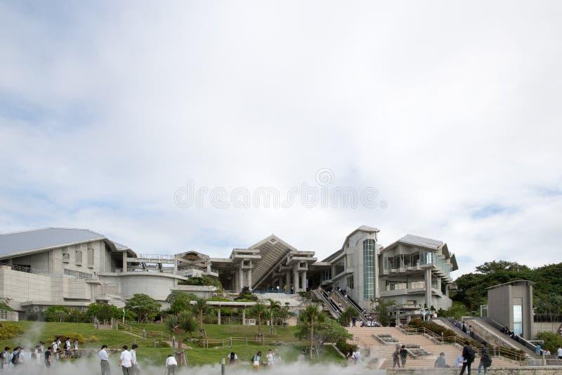 冲绳岛,日本- 2017年10月19日:冲绳岛Churaumi水族馆, O 免版税库存图片