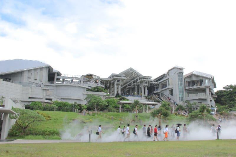 冲绳岛Churaumi水族馆,冲绳岛,日本 免版税库存图片