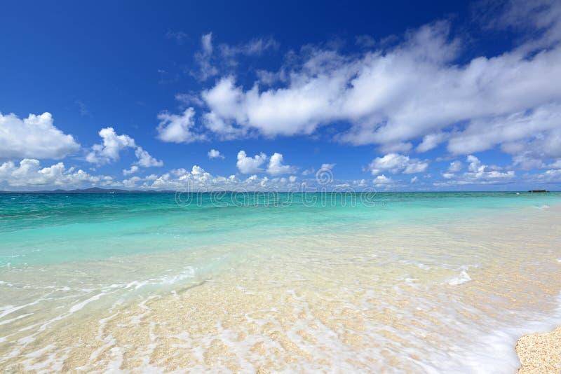 冲绳岛的鲜绿色海。 免版税库存图片