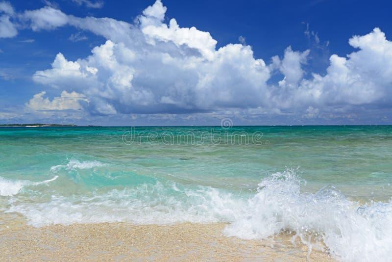 冲绳岛的鲜绿色海。 库存照片
