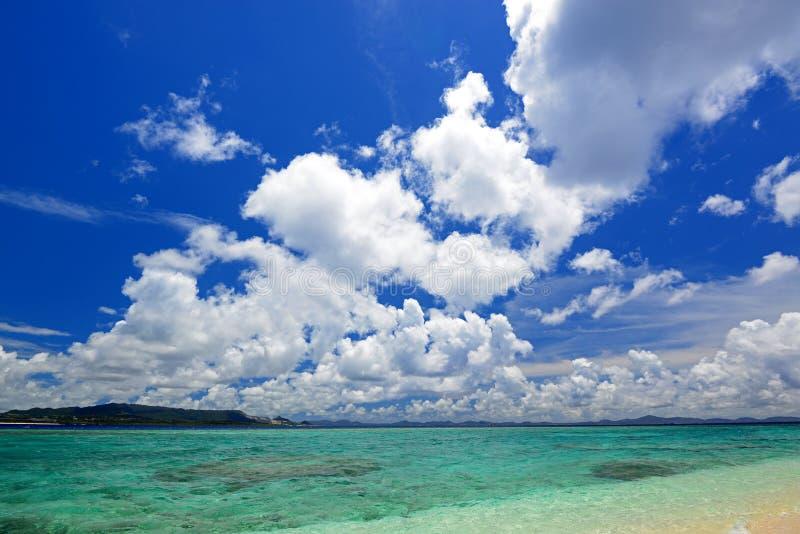 冲绳岛的鲜绿色海 库存图片