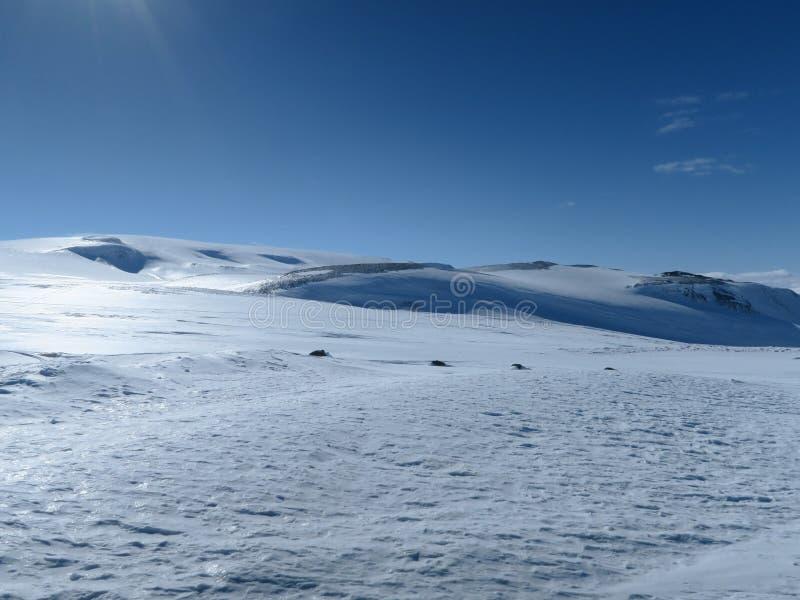 冷冬天 图库摄影
