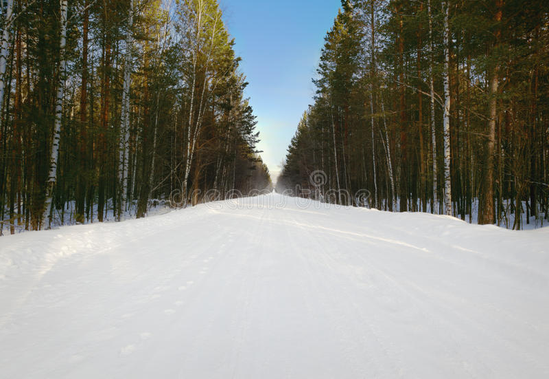 Download 冷和多雪的冬天路 库存照片. 图片 包括有 多雪, 季节, 本质, 晴朗, 圣诞节, 季节性, 杉木, 影子 - 30331058