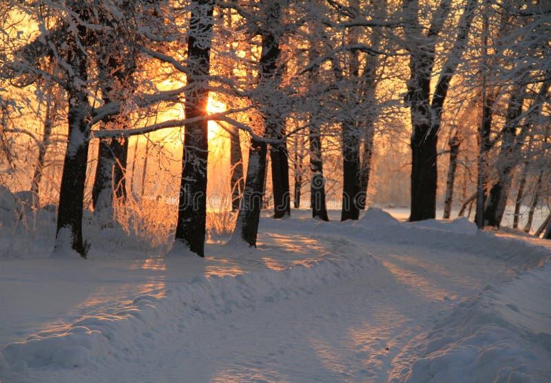 冷和温暖的风景 图库摄影