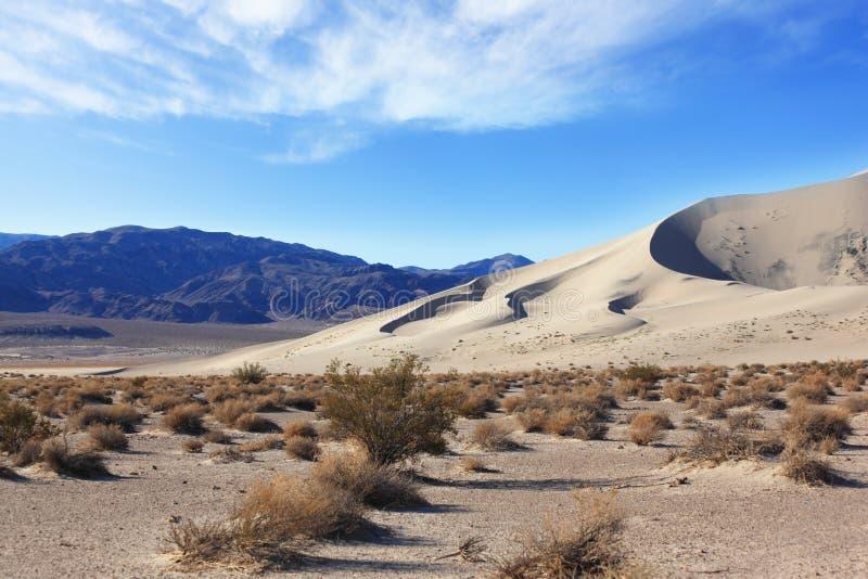 冷尤里卡著名沙子 免版税库存图片