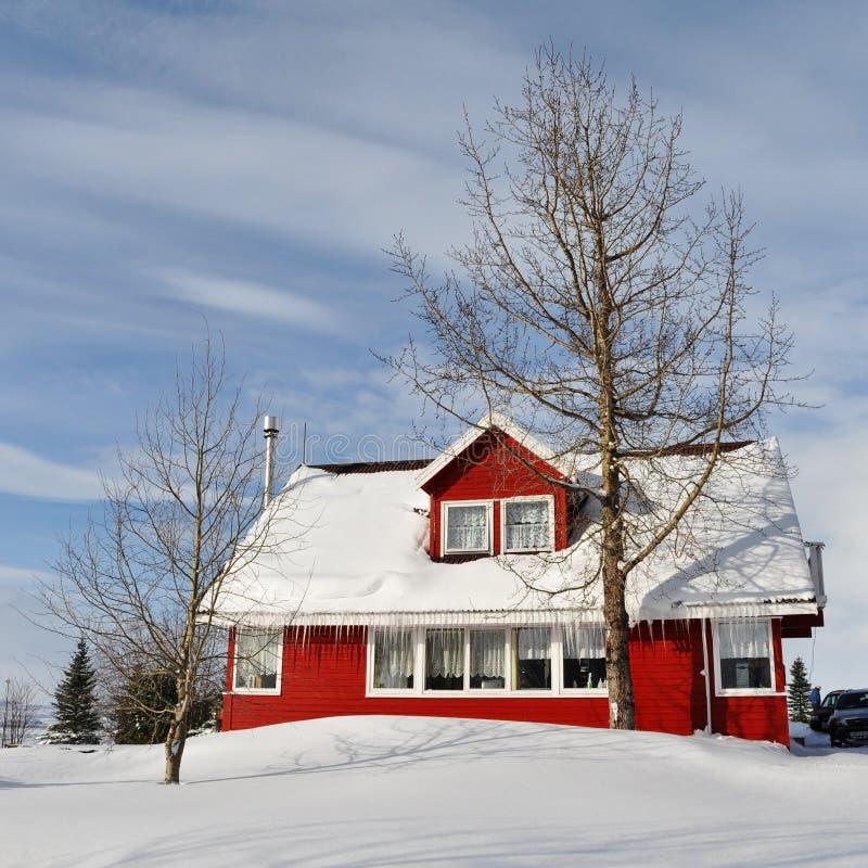 冷房子冰岛红色多雪的冬天 免版税库存图片