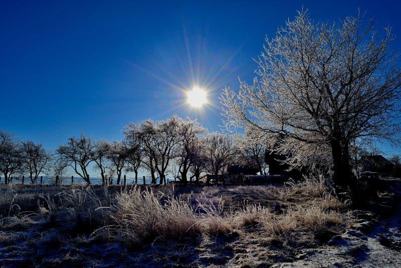 冷日冷淡的横向 免版税库存照片