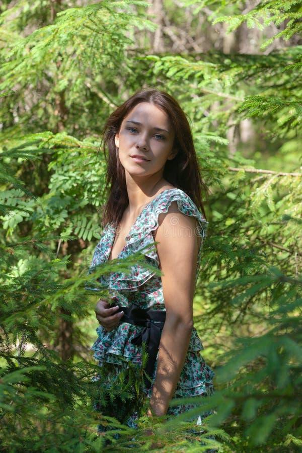冷杉女孩结构树木头 免版税图库摄影