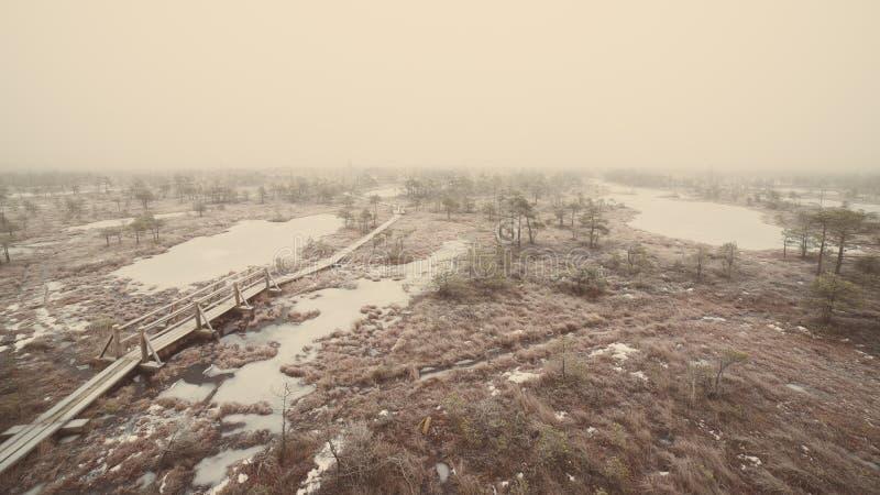 冷淡的冬天沼泽的-减速火箭的葡萄酒木木板走道 库存图片