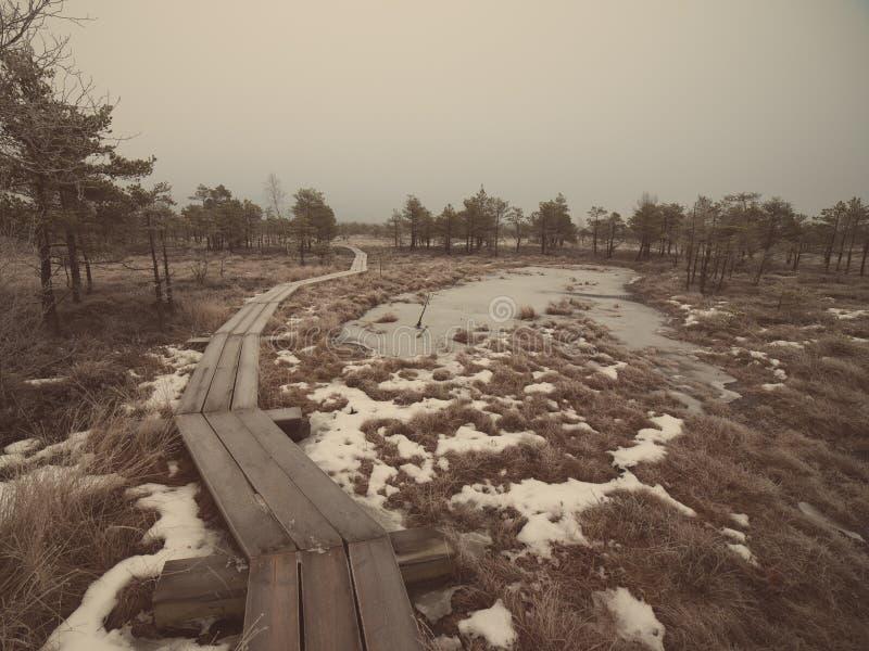 冷淡的冬天沼泽的-减速火箭的葡萄酒木木板走道 图库摄影