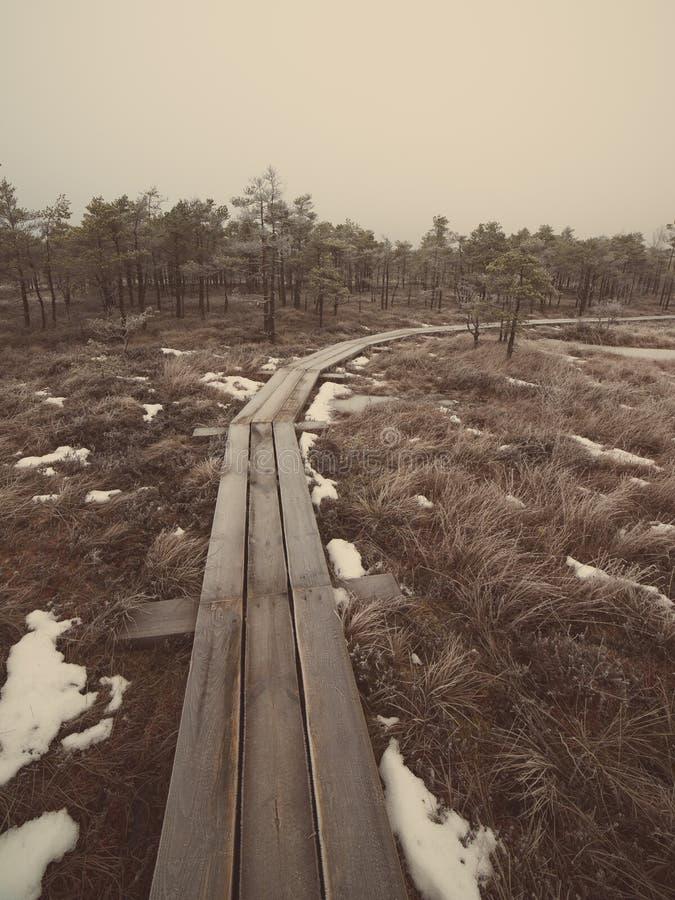 冷淡的冬天沼泽的-减速火箭的葡萄酒木木板走道 免版税库存照片