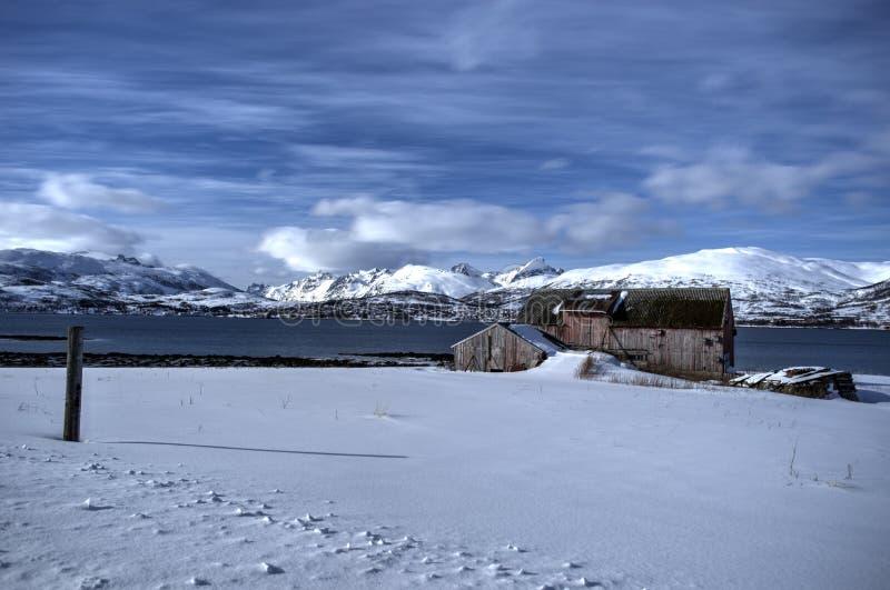 冷淡的多雪的领域的老被风化的和损坏的谷仓与与强大山峰的蓝色海湾和天空背景在北极cir 免版税库存图片