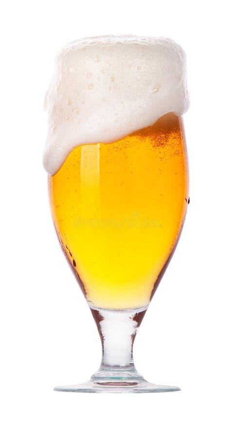 冷淡的杯与泡沫的低度黄啤酒   免版税库存图片