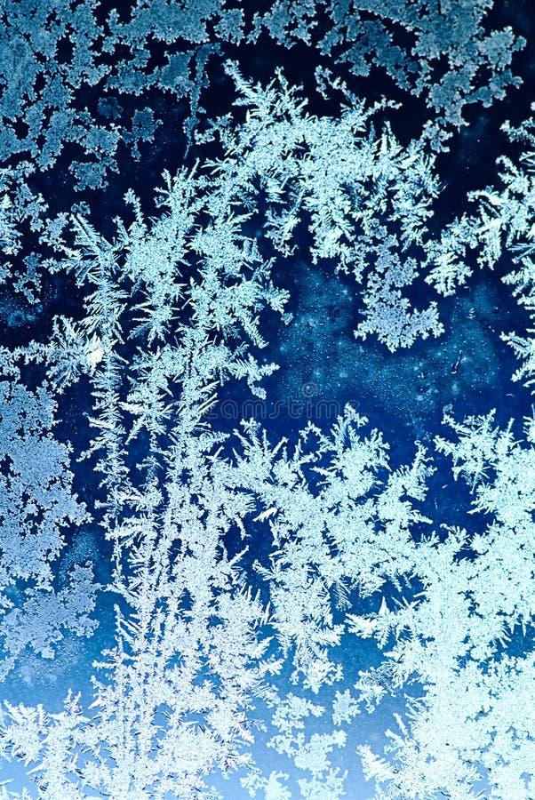 冷淡的玻璃模式视窗 免版税库存照片