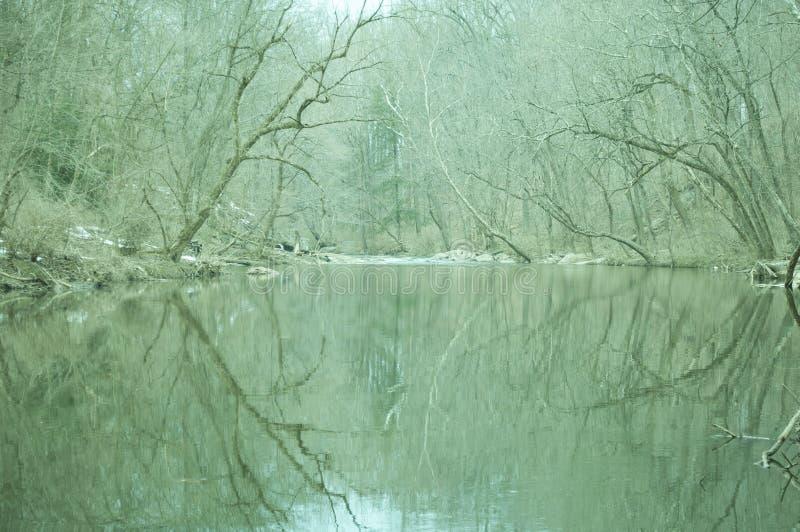 冷漠的河 库存图片