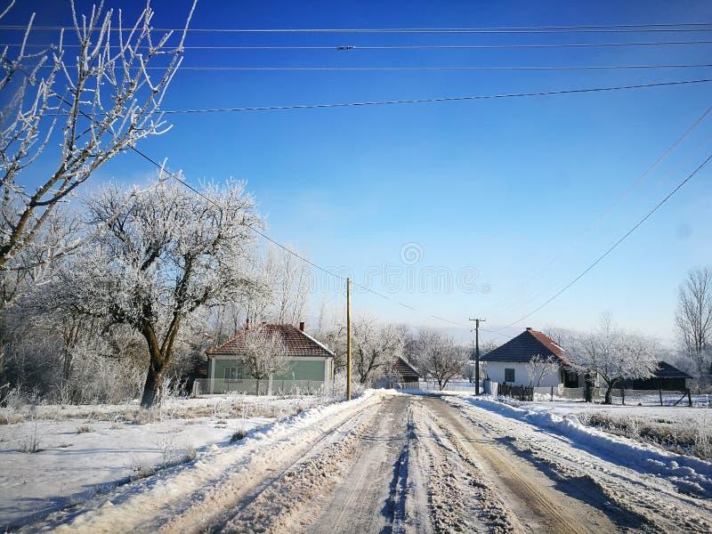 冷的冬天在一个村庄在塞尔维亚 免版税库存图片
