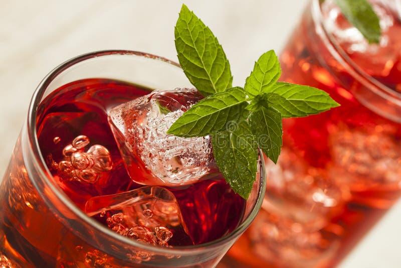 冷的刷新的莓果木槿冰茶 免版税库存照片