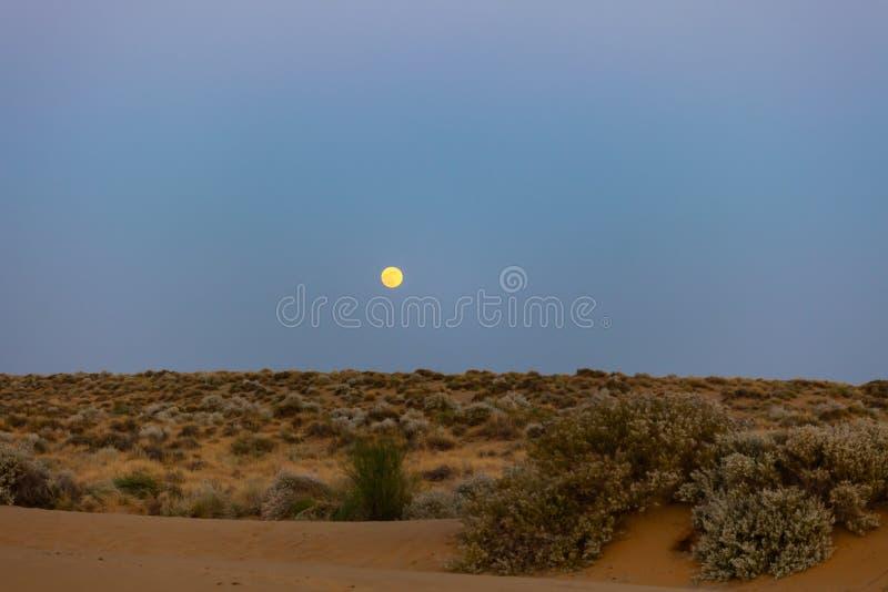 冷的夜在沙漠 库存照片