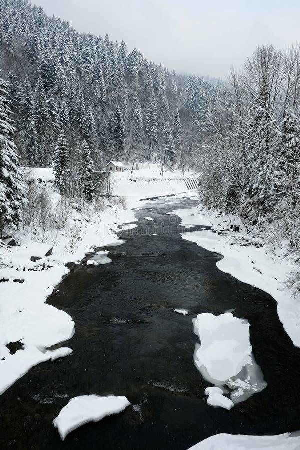 冷的山河和积雪的松树在冬天季节在山 免版税库存图片