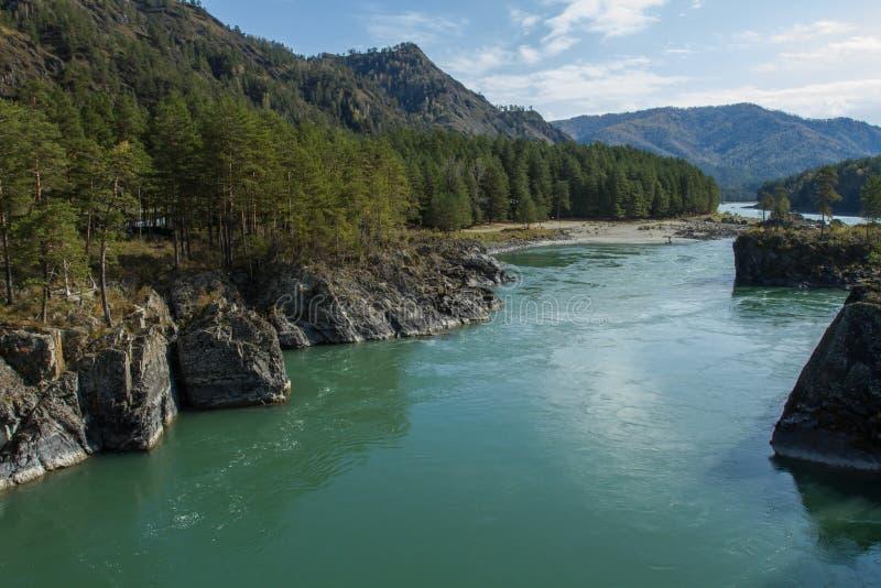 冷的山河Katun 到阿尔泰山的旅途 免版税库存照片