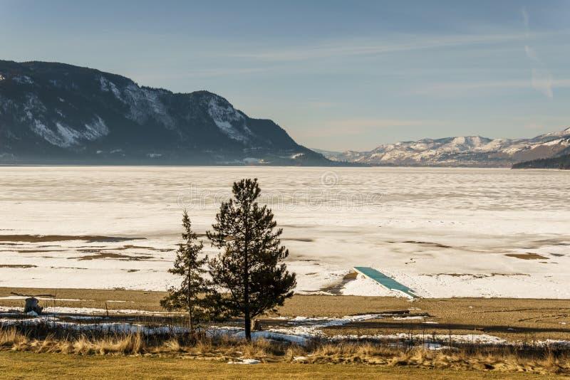 冷的早晨风景冻一点Shuswap湖不列颠哥伦比亚省加拿大 免版税库存图片