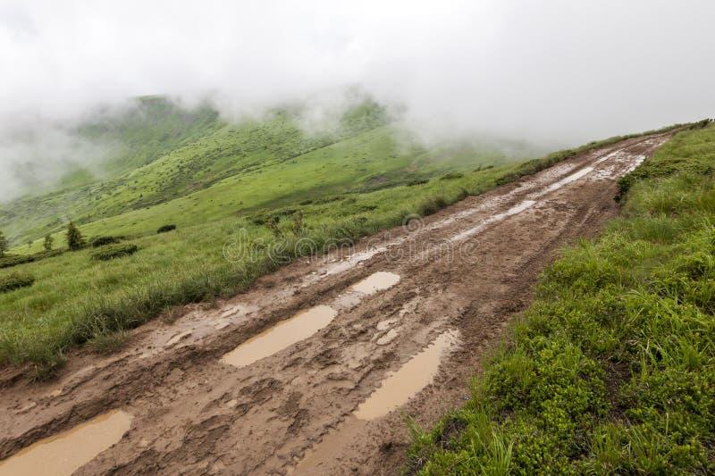 冷的有雾的夏天早晨全景在喀尔巴阡山脉的 免版税库存图片