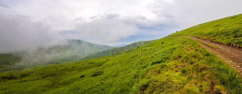 冷的有雾的夏天早晨全景在喀尔巴阡山脉的 免版税库存照片