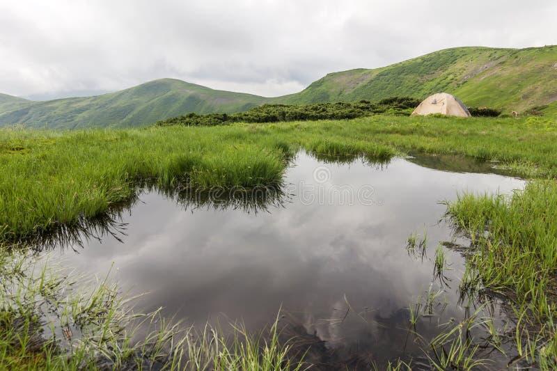 冷的有雾的夏天早晨和游人远足者帐篷全景  库存照片