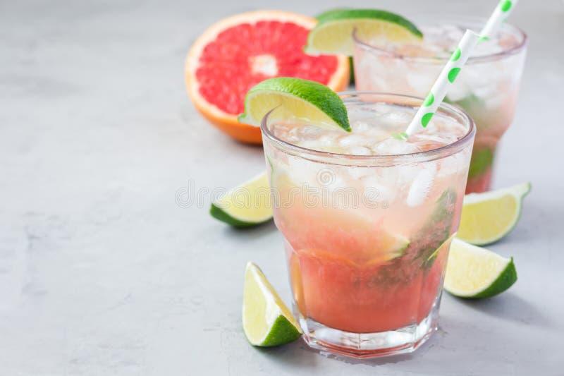 冷的桃红色鸡尾酒用新鲜的葡萄柚、石灰和冰块,帕路玛,拷贝空间 免版税库存图片
